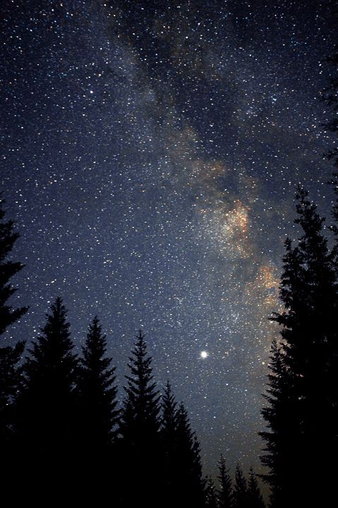 Stars have always fascinated me, but working in astronomy is beyond me.