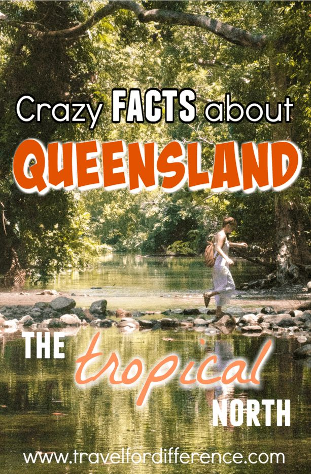 Here are a few crazy facts about Queensland - the Tropical North of Australia! #Queensland #Australia #Pacific #Facts #TropicalNorth
