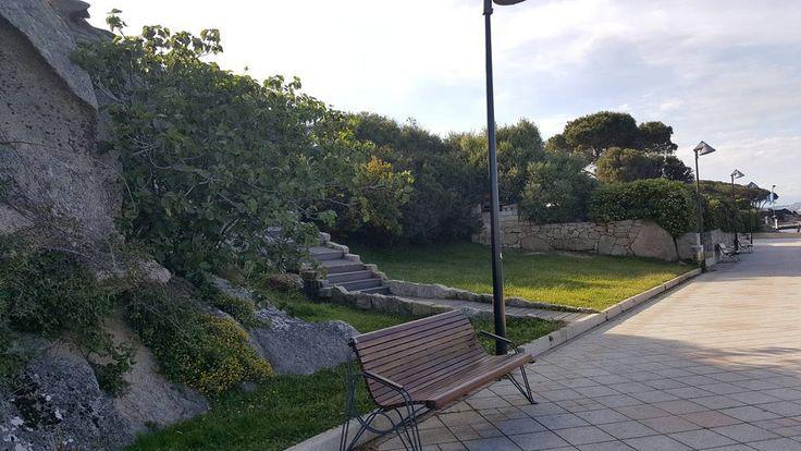 Passeggio a Palau #viaggiodiunacoileritalianainbrasile #viagemdeumacoileritaliananobrasil #travel #travelblog #photooftheday #tbt #paesaggioitaliano #cute #tree #green #bestofthedays #beautifulday #cidadedepraia #picoftheday #picofsardinia #goodpic #nature #goodday #geographyphotography #geography ##instagram #insta_sardegna #sardinia #sardegna #italy #lanuovasardegna  #palau http://tipsrazzi.com/ipost/1507773501262729665/?code=BTssALIgxHB