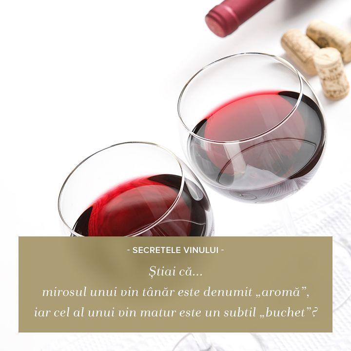 """O altă curiozitate, pe care iubitorii și cunoscătorii vinurilor sigur o cunosc: vinul tânăr are o """"aromă"""", în timp ce la servire vinul matur, vechi, își arată """"buchetul""""."""