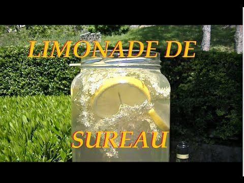 Recette de la limonade de fleur de sureau noir. - YouTube