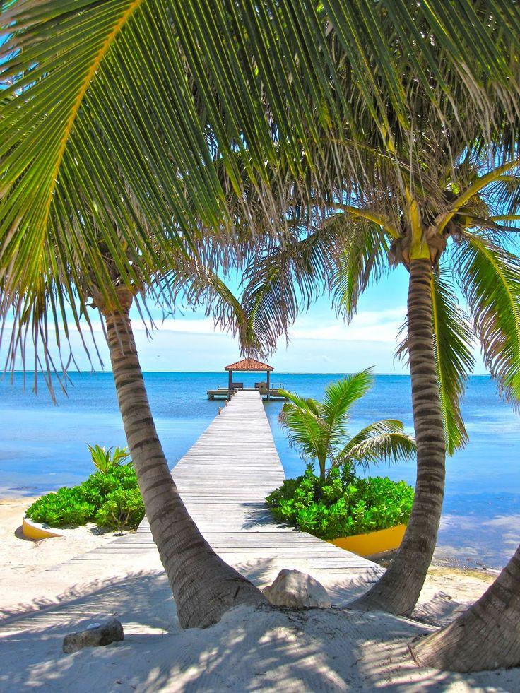 Belize ha un clima tropicale con pronunciato bagnato e secco-8503