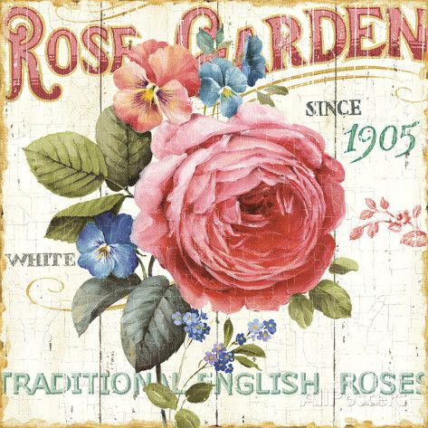 Giardino con rose I Stampe di Lisa Audit su AllPosters.it