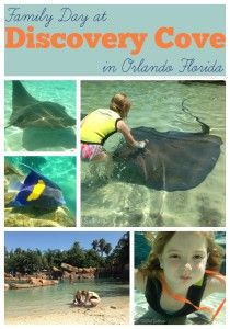Spending a Family Day at Discovery Cove during our Orlando Florida Vacation | StuffedSuitcase.com