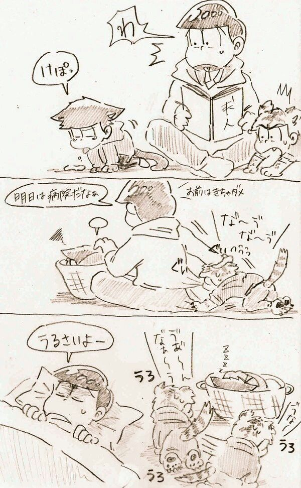Awww poor ichikitty and see karatiger is so cute~
