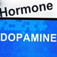 Maintaining adequate dopamine levels is important for bone health because dopamine helps to reduce stress, and as Savers know, stress causes the body to respond by increasing cortisol synthesis. Chronically elevated cortisol levels contribute to an acidifying environment, which in turn accelerates bone loss.