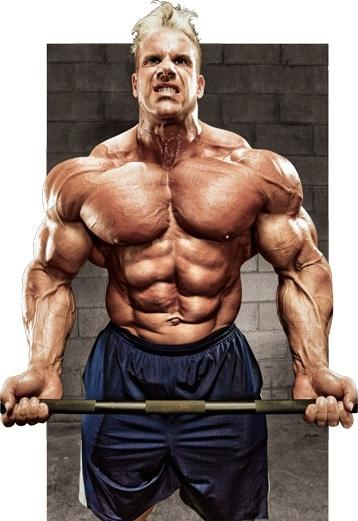Improve Size and Strength | FLEX Online | Anatomía y Deportes