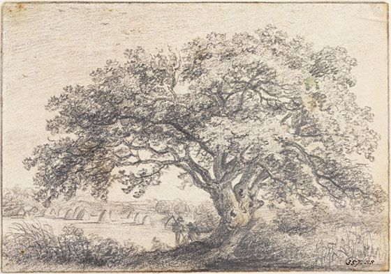 John Constable - A Great Oak Tree - c.1801
