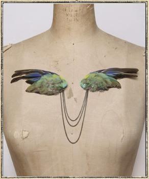 www.origin-of-style.com  Julia deVille  Jewellery, Taxidermy, Bird, Feathers, Wings, Green.