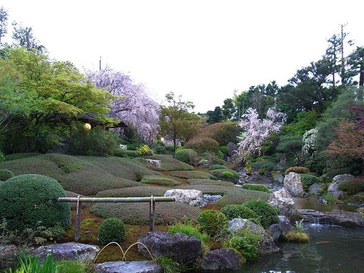 妙心寺退蔵院の庭園