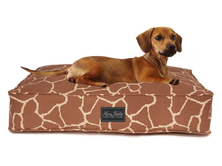 Harry Barker | Ivystone | WTC 236 | Creating inspired, eco-friendly pet products since 1997.