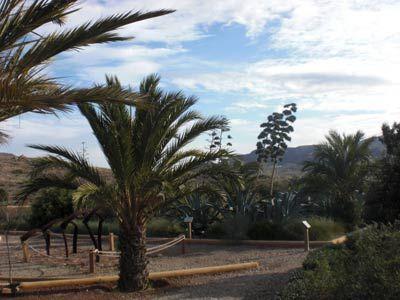 Jardín Botánico el Albardinal. Rodalquilar. Cabo de Gata