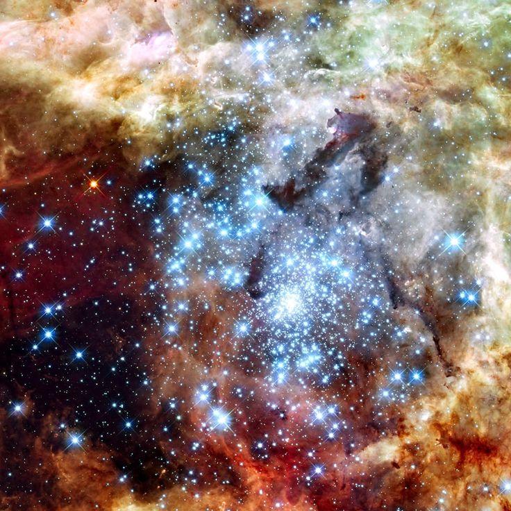 タランチュラ星雲(カジキ座30)。地球から17万光年。大マゼラン雲の中にある。星の形成が活発なところとして知られる。