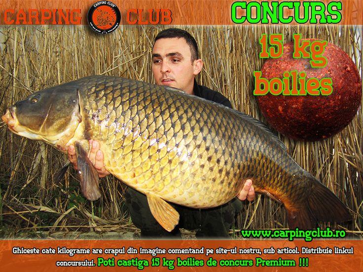http://www.carpingclub.ro/articole/pescuit-de-competitie/pescuit-sportiv-la-crap.html