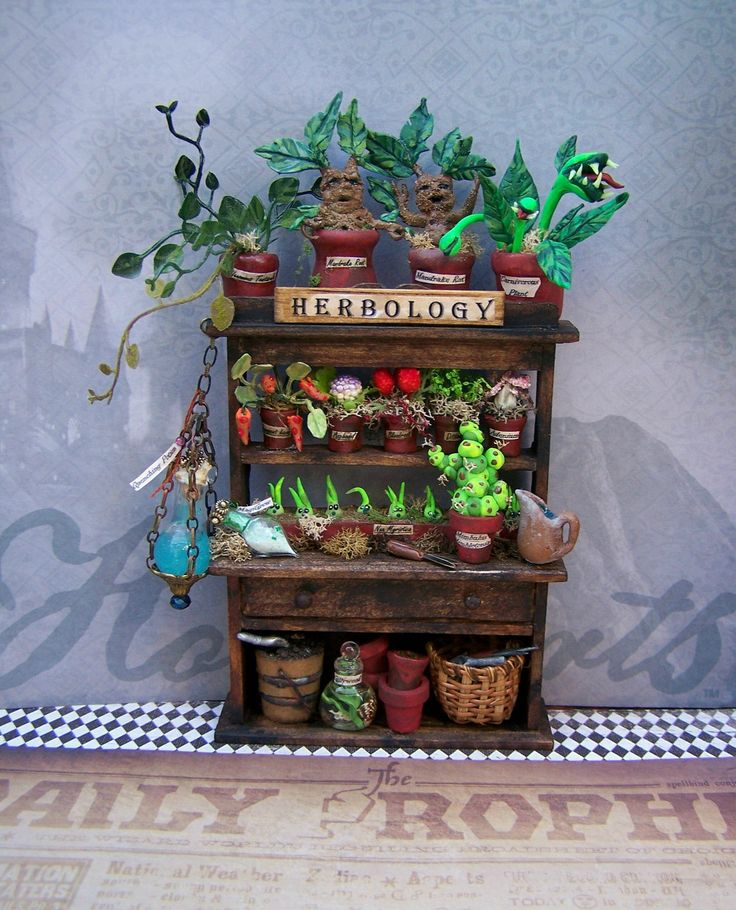 Dollhouse Miniature OOAK Harry Potter Professor Sprout Herbology Cabinet Layaway Available. $90.50, via Etsy.