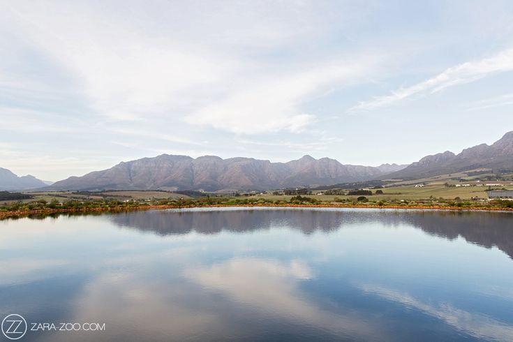 Landscape view from Cavalli Estate near Stellenbosch.