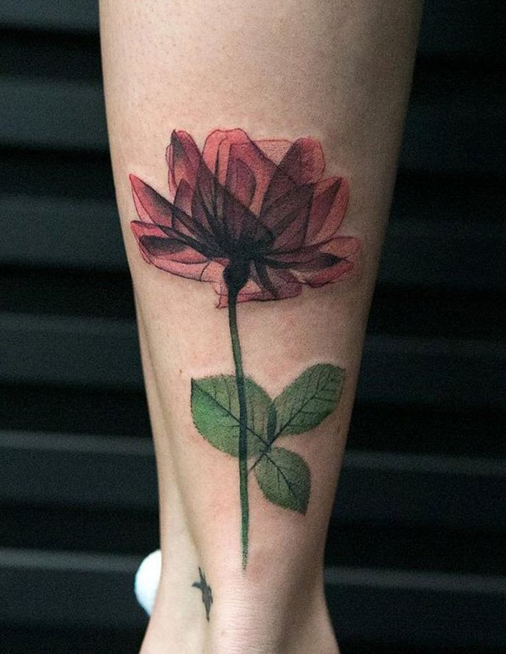 X Ray Geometric Flower Tattoo for Women - Ankle Calf Leg - MyBodiArt.com