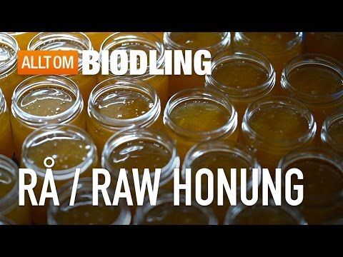 Rå honung / Raw honung – Allt om honung