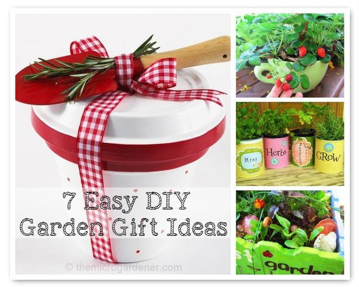 Looking For Unique, Personalised Garden DIY Gifts? These Creative  Economical Ideas Will Help You