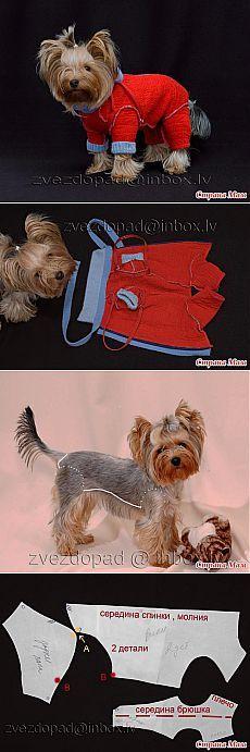 Комбинезон для собаки + выкройка - Гардероб для наших любимых питомцев (собак, кошек) - Страна Мам