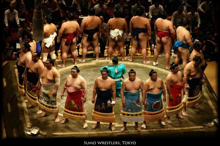Plus amusants que le théâtre Nô, plus typiques qu'un match de baseball, les combats de sumos sont l'une des attractions phares pour les voyageurs qui souhaitent vivre une expérience authentiquement japonaise. Jacques Chirac en grand amateur de la culture japonaise en raffolaità tel point qu'un de ses chiens fut nommé Sumo!