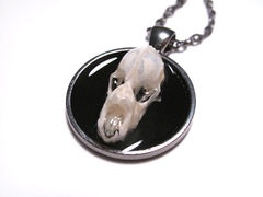 Bone Jewelry - Psychobilly Bat Skull pendant. This pendant is made from the real skull of a Bicolored Roundleaf Bat. The skull is immersed in a transparent resin and fastened to a 1 inch circle pendant. Both the pendant and chain are gun metal gray.