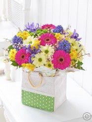 Spring Gift Bag Plus