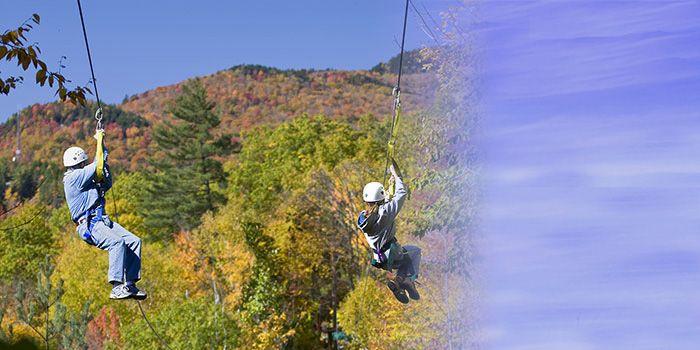 Alpine Adventures Treetop Canopy Tour