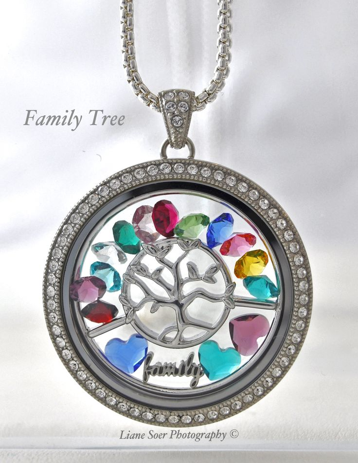 1000 ideas about family tree designs on pinterest