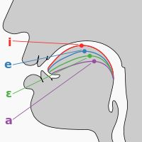 International Phonetic Alphabet - Wikipedia, the free encyclopedia