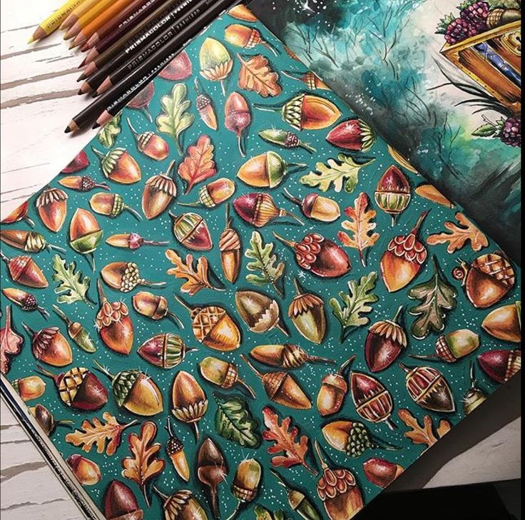 Enchanted Forest Acorns More Adult ColoringColoring BooksColouring TechniquesJohanna BasfordColored PencilsEnchanted