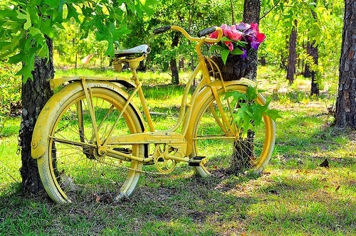 Vintage Yellow Bicycle:  Plough, Mom Blog, Bicycles Planters, Bike Riding, Cute Ideas, Vintage Bicycles, Vintage Yellow, Beaches Cruiser, Yellow Bike