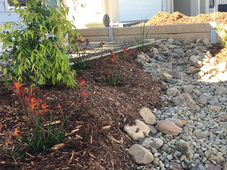 Dry river bed in native garden design - Landscaping North ...