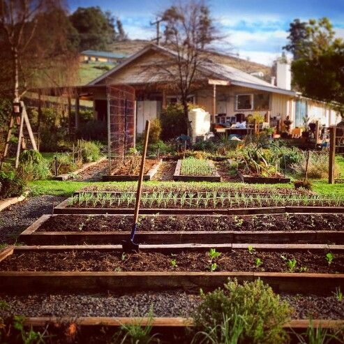 24 Best Fence Idea Images On Pinterest Portal Wood