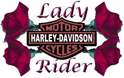 Best 25 Harley Davidson Quotes Ideas On Pinterest