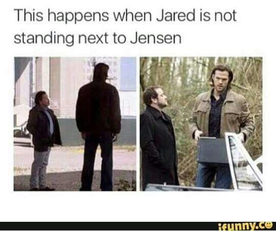 Jensen IS tall...Jared is just HUGE!
