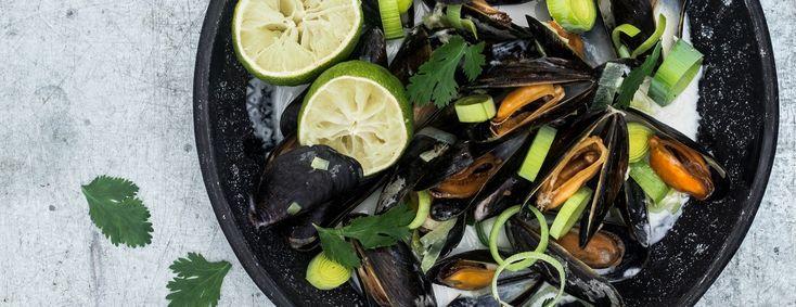 Het recept voor deze Thaise mosselen komt uit het boek Food talk van Kim Feenstra en Bénine Bijleveld. De kokosmelk, gember & limoen geven enorm veel smaak!