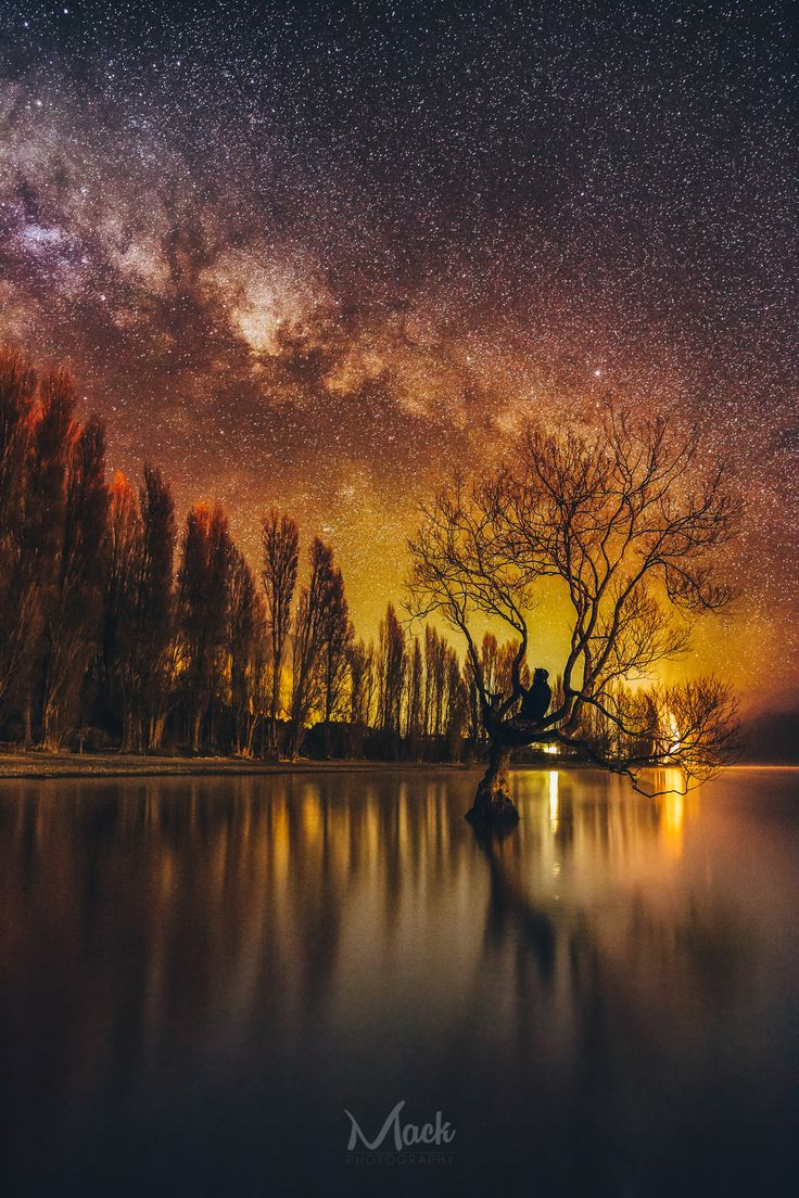 I think the galaxy itself has its own little spiral leading to the figure within this piece (ie the person) There are also nice diagonals leading the eye to it as well.  https://500px.com/photo/163422735/pondering-the-calmness-by-mikey-mackinven?utm_medium=pinterest&utm_campaign=nativeshare&utm_content=web&utm_source=500px