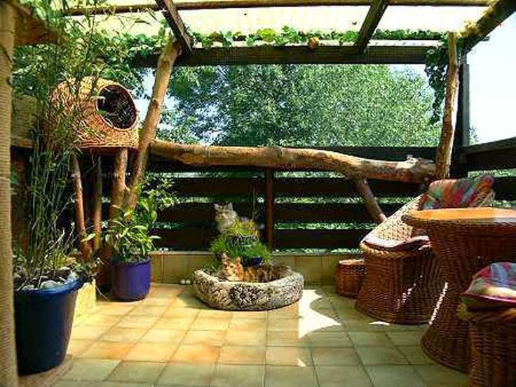 Love the inside of this cat enclosure, the potted plants, the furniture for the humans, the rustic look
