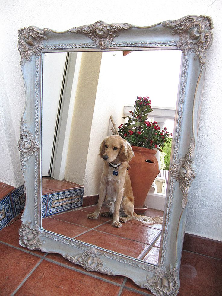 I have transformed this old gilt mirror with Anni Sloan chalk paint, my dog loves this one too