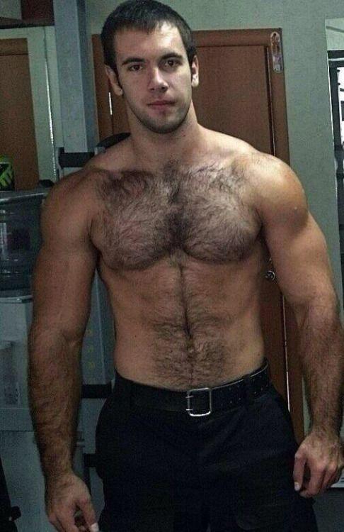 free gay pics hairy