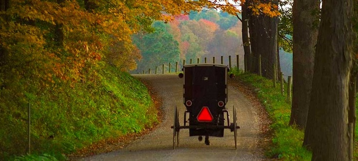 what a wonderful way to enjoy fall beauty... I wanna be in that buggy