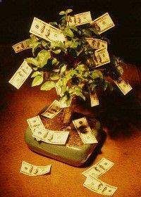 free manifest wealth
