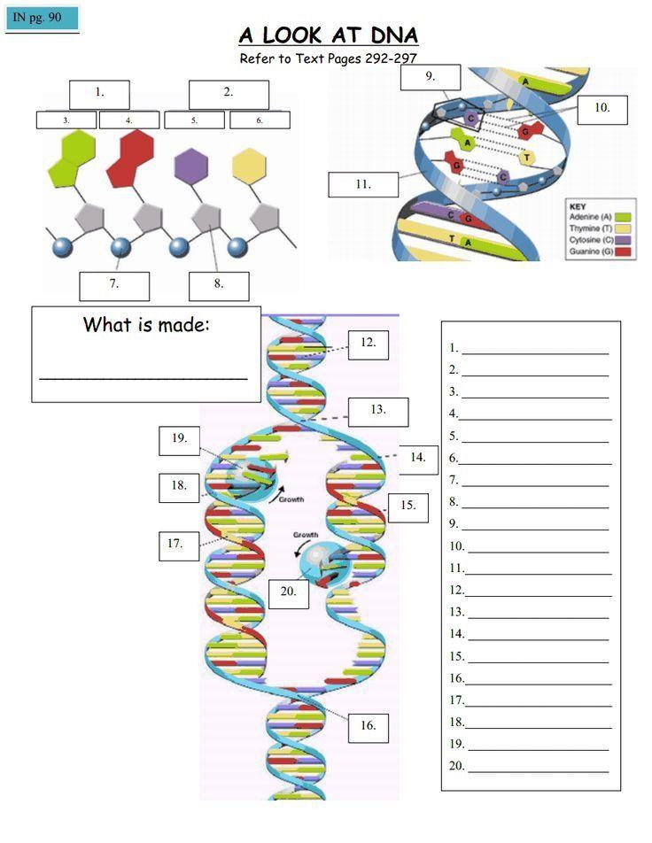 Pin On Biotech