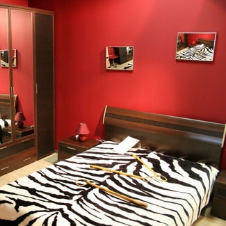 zebra bedroom ideas for kids - Zebra Print Decorating Ideas Bedroom