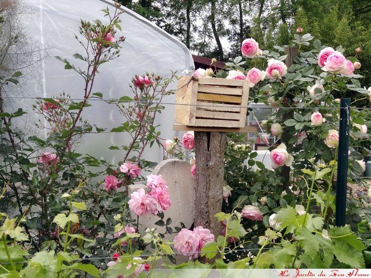 Les 10 meilleures images du tableau coccinelle sur for Hotel jardin de fleurs kyoto
