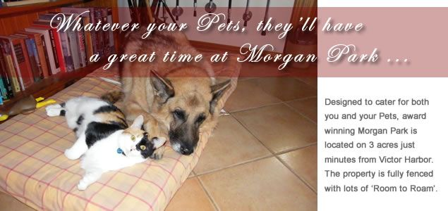 Morgan Park Bed and Breakfast, pet friendly Holiday Accommodation in Victor Harbor, by SA OzeHols Australia www.OzeHols.com.au/11012 #petfriendly #holidays #SA