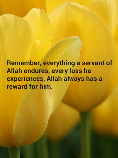 Allah has a reward...