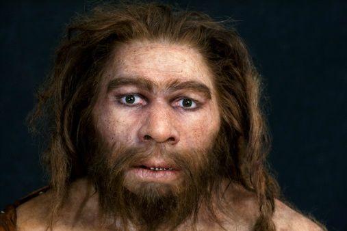 Stock Photo : Neanderthal model