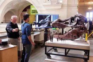 Kinect scan of T. rex skull addresses paleontological mystery #Geology #GeologyPage